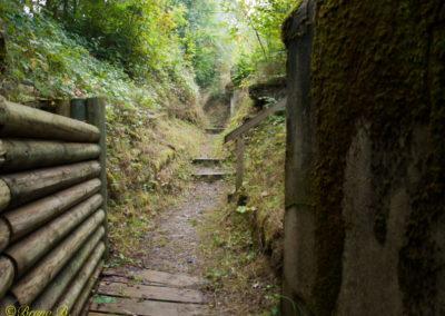 Fortifications Vully & Morat